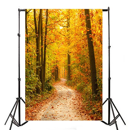 OFILA Autumn Backdrop 3x5ft Vinyl Photography Background Forests Trail Fallen Leaves Nature Scenery Interior Wallpaper Birthday Party Decoration Little Girl Portraits Aged Photos Children Shoots Props