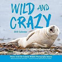 Wild and Crazy 2019 Wall Calendar