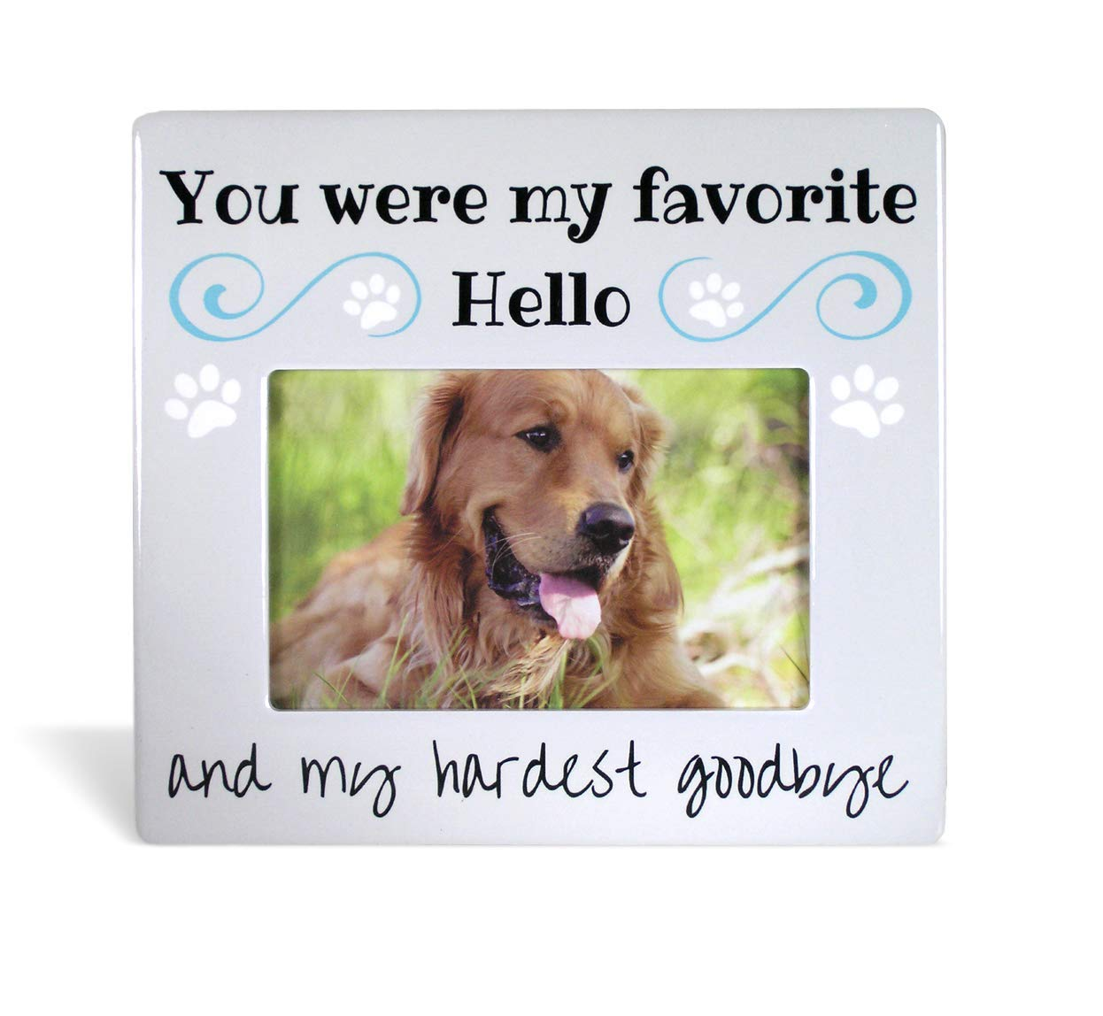 BANBERRY DESIGNS Pet Memorial Picture Frame - Bereavement Photo Frame for Dog or Cat - You were My Favorite Hello and My Hardest Goodbye 2355
