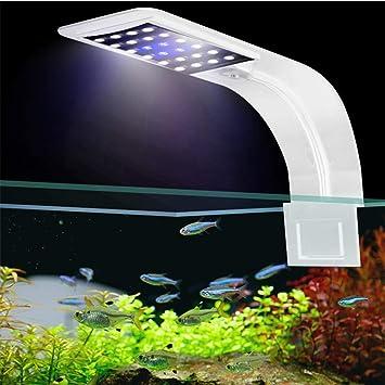 FOONEE Luces LED Ultra Finas de 10W para Acuarios, Clip Potente en Iluminación de Acuario de Peces Lámpara LED Impermeable para Acuario, LED Azul Blanco: ...