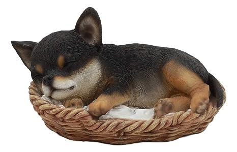 Amazon.com: Ebros Lifelike Adorable Chihuahua perro dormir ...