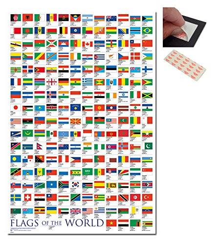 flags world poster