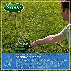 Scotts 30158 Turf Builder Thick'R Lawn Sun and Shade, 40 LB