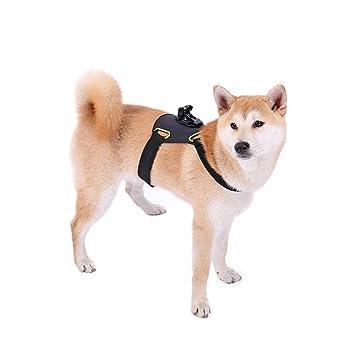 Ohana Fetch - Arnés para perro, arnés para el pecho para GoPro Hero 4/