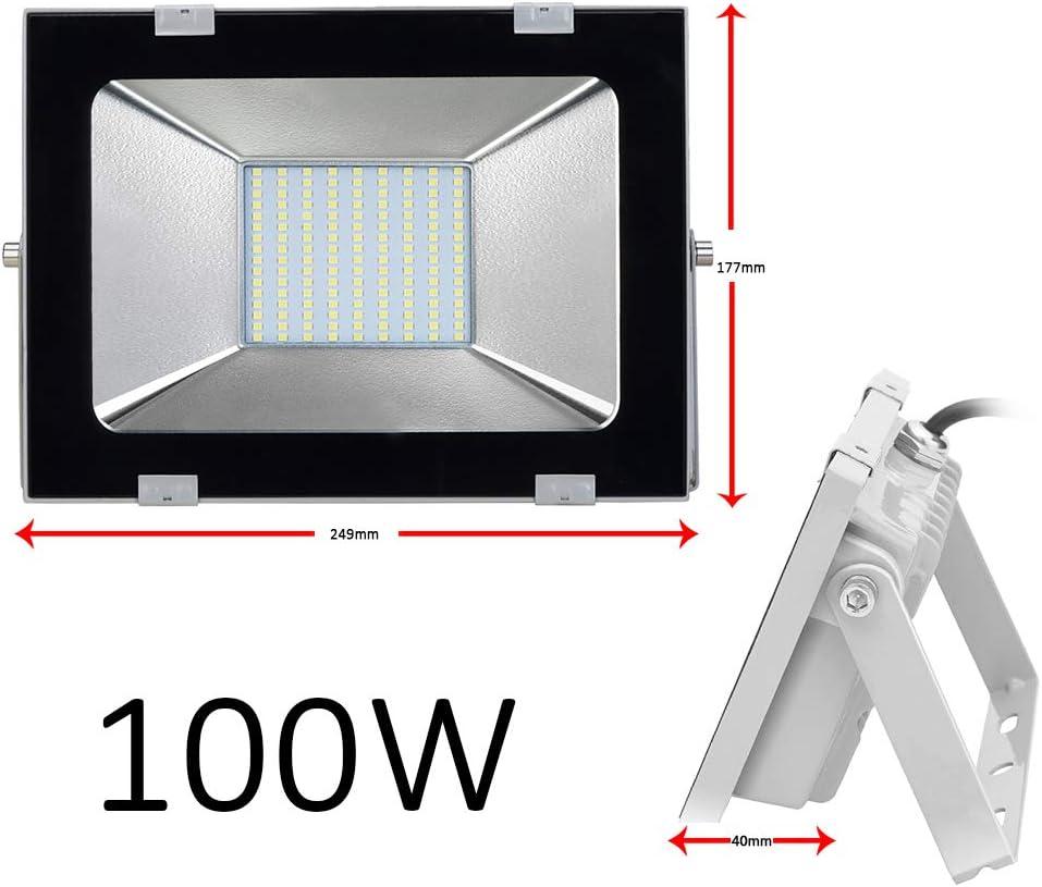 100W Luci di Inondazione del LED 8000LM 6000K Bianco Freddo Faretti IP65 Impermeabile Illuminazione Esterni per Giardino Paesaggio Palcoscenico