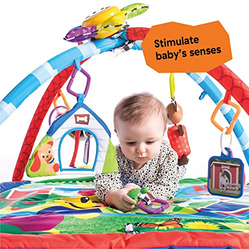 Large Product Image of Baby Einstein Caterpillar & Friends Play Gym with Lights and Melodies, Ages Newborn +