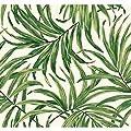 York Wallcoverings AT7050 Tropics Bali Leaves Wallpaper, White/Green - Ultra Removable