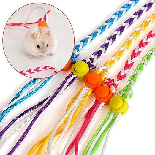 FUVOYA Pequeña Correa para Mascotas, pequeño Animal Leash Plomo ...