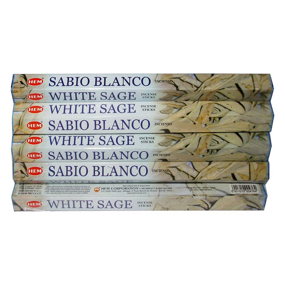 Hemホワイトセージ100 Incense Sticks (5パックの20 Sticks) B00ICOO0PC