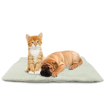 MAX-CARE ASAB Cama para Mascotas autocalefactable, tamaño Mediano: Amazon.es: Productos para mascotas