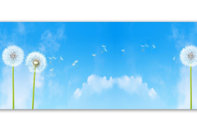 Selbstklebende Bordü re 'Pusteblumen', 4-teilig 560x15cm, Tapetenbordü re, Wandbordü re, Borte, Wanddeko,Lö wenzahn, Glü ck wandmotiv24