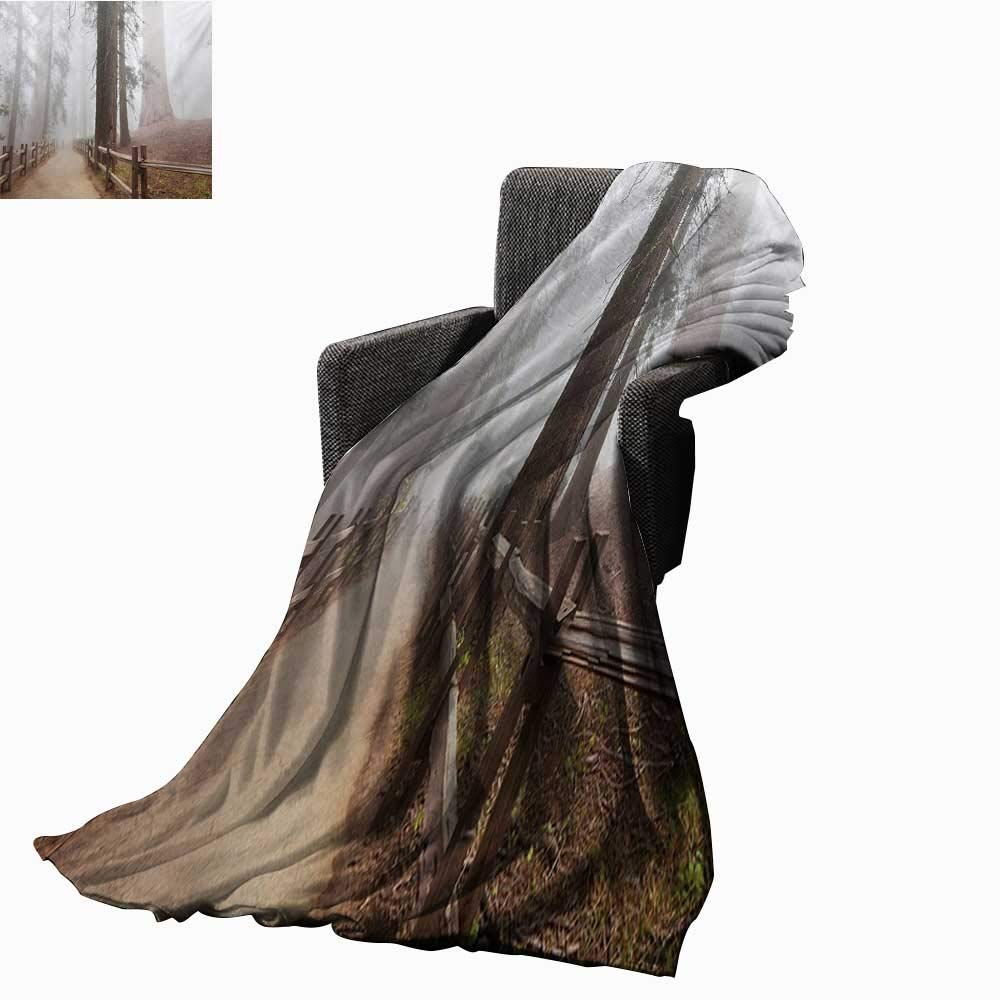 Anyangeight ヨセミテ 在庫処分 デジタルプリントブランケット 常緑の森と歩道のセコイア国立公園 霧の朝自然アート 超柔らか 快適 ソファ 椅子 70\ 新品未使用 L W B07MGBL91V ベッドに最適 カラー01 70