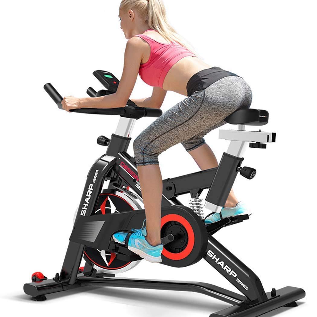 LCDモニターおよび脈拍のモニターが付いている家、ベルトドライブ回転自転車の心臓運動器具のための静止したエアロバイク