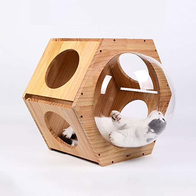 Amazon.com : Hong Yi Fei-Shop-Pet nest Gato De Madera Maciza Pared Nido Ventana Transparente Cat House Cat Marco Escalada, Hexágono Cápsula Espacial Gato ...