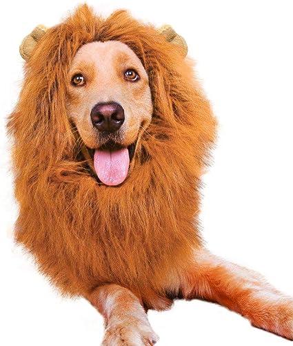 Vivifying Lion Mane Costume