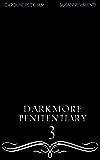 Darkmore Penitentiary 3 (Supernatural Prison for Dark Fae)