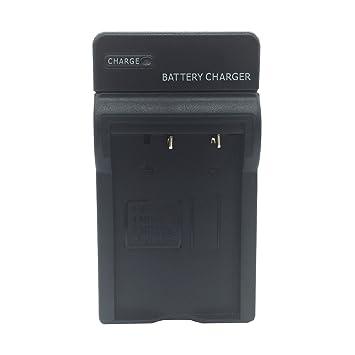 Amazon.com: TEQIN FNP-60 cargador de batería y cargador de ...