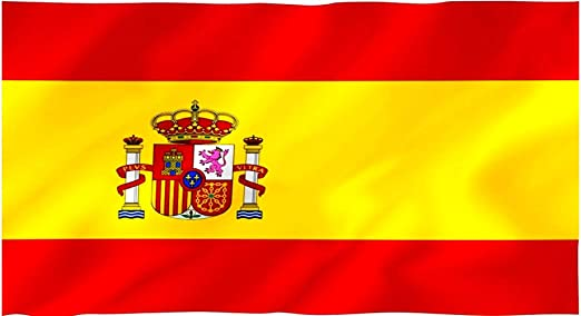 Hogaltia Bandera de España para Exterior | 90x60 cm | Bandera selección Española: Amazon.es: Jardín