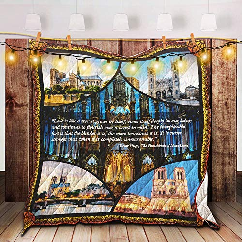 Notre Dame Paris Quilt, Twin - All Season Quilts Comforters with Reversible Cotton King/Queen/Twin Size - Best Decorative Quilts-Unique Quilted for - Comforter Dame Twin Notre