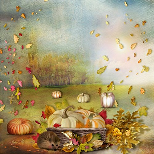 CSFOTO 4x4ft Background for Autumn Pumpkin Fallen Leaves Photography Backdrop Cartoon Cute Hedgehog Animal Fall Basket Thanksgiving Day Holiday Child Kid Baby Photo Studio Props Polyester -