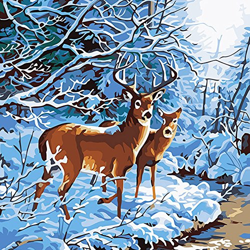 Fengtuo DIY Oil Painting Paint by Number Kit Canvas Painting Hand Colouring Decorative Picture for Deer Brothers 16