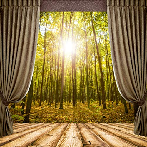 (Yeele 8x8ft Vinyl Photography Background Spring Scene White Bamboo Forest Curtains Outdoor Sunshine Sunset Brown Wooden Floor Photo Backdrop Studio Props Wallpaper)