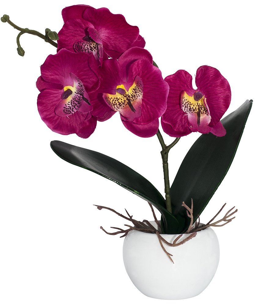 Elegant Artificial Fuschia Pink Orchid in Small Round White Vase by Haysoms Happy Homewares HA025-YM-PU