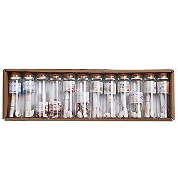 12 Piezas Mini Tapón Corcho de Botella Transparentes Colgante de Suerte Diseño Tarros de Cristal