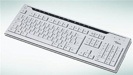 Fujitsu KB500 105 teclas USB de teclado alemán gris