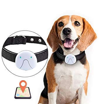 XDYFF Localizador GPS para Gatos - Collar GPS Finder Global ...