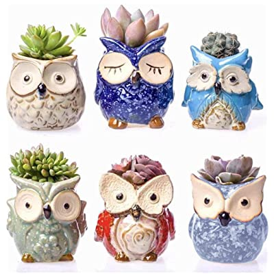 """Claywa Ceramic Owl Succulent Pots Cute Animal Plant Planters 2.75"""" to 3.35"""" with Drainage Pack of 6 Plants Not Included: Garden & Outdoor"""