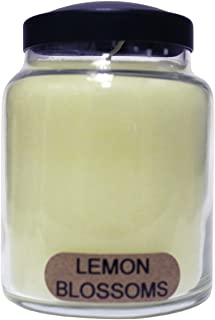 product image for A Cheerful Giver Lemon Blossoms 6 Ounce Baby Jar Candle, 6oz, Cream