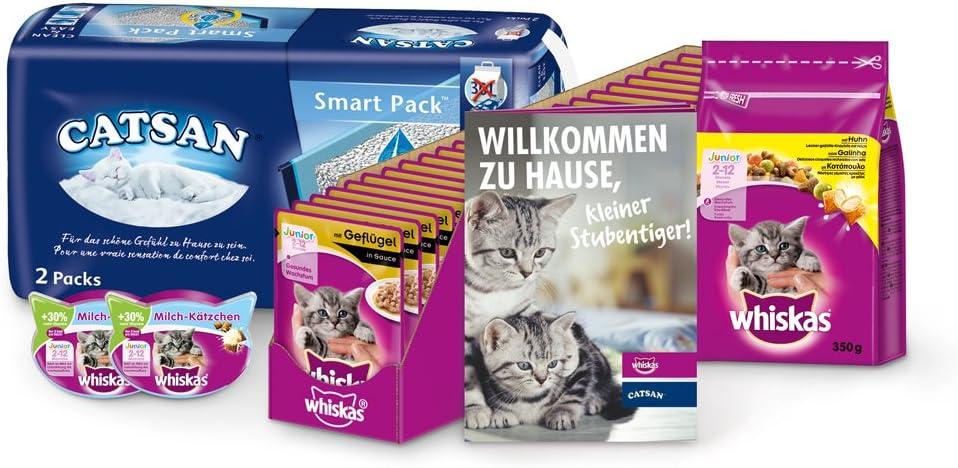 Whiskas & catsan Kitten Pack para Junior de Gatos con Forro en húmedo, trockenfutter, Gato Aperitivos & Gato dispersa – Gatos Caja Especialmente para Gato, 1er Pack (1 x 7,7 kg): Amazon.es: