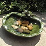 Spouting Green Frog Solar Powered Ceramic Water Feature