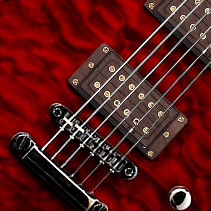 Healifty - Pastilla para guitarra humbucker doble Coil Pickup ...