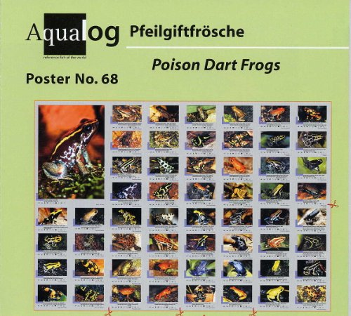 Aqualog: Poison Arrow/Dart Frogs Fold (Poison Arrow Dart Frog)