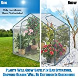 BenefitUSA Outdoor Garden Green House Walk In Greenhouse Canopy Gazebo (5.9'X3.5'X5', Transparent)