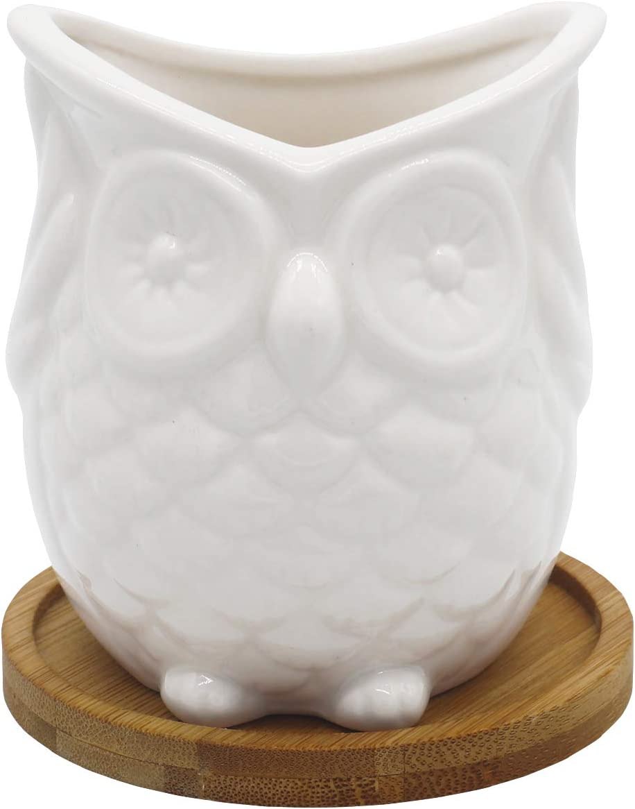 Gemseek White Ceramic Owl Succulent Planter Pot, Single Cute Animal Shaped Cactus Flower Container Bonsai Holder with Bamboo Drainage Tray for Indoor Home D cor