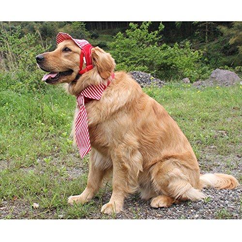 MYIDEA Adjustable Dog Hats for Large Dogs - Outdoor Sun Cap for Pet Dogs, Visor Baseball Hat for Summer Ear Holes Sunbonnet Pet Supply (Stripe Hat - Blue,L) by MYIDEA