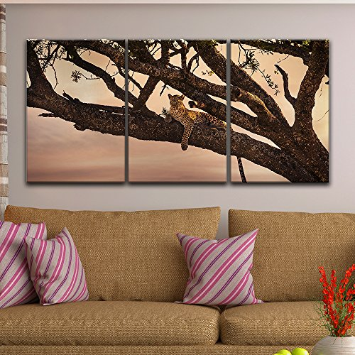 3 Panel Leopard Lying on a Tree Branch Gallery x 3 Panels