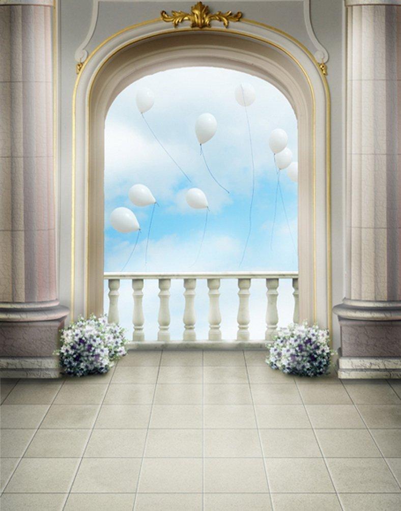 Hallバルーン写真Backdrops写真小道具Studio背景5 x 7ft   B01GYVC61Y