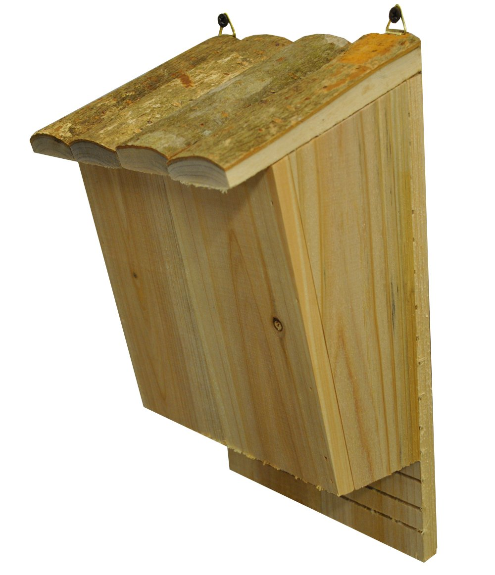 Selections Large Wooden Bat Box