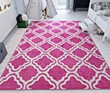 Modern Rug Pink 3'3″ x 5′ Lattice Trellis Accent Area Rug Entry Way Bright Kids Room Kitchn Bedroom Carpet Bathroom Soft Durable Area Rug Review