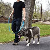 Wagtime Club Soft &Thick Dual Handle 6FT Dog Leash, Premium Nylon Double Padded Handles for Medium, Large or XLarge Dog
