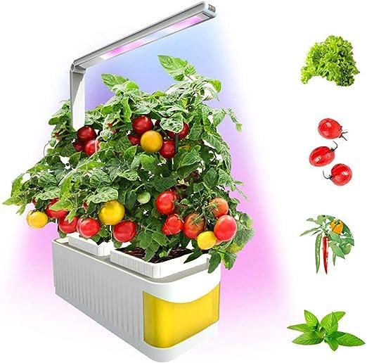 FDYD Hidropónico de Interior jardín de Hierbas Smart Kit Multi-Función Creciente Cultivo de hortalizas llevó la lámpara de la Flor para la Planta de luz Crecimiento: Amazon.es: Hogar