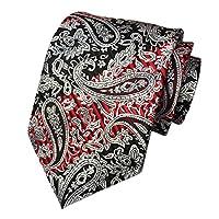 Secdtie Men's Elegant Paisley Silver Black Red Jacquard Woven Tie Formal Necktie