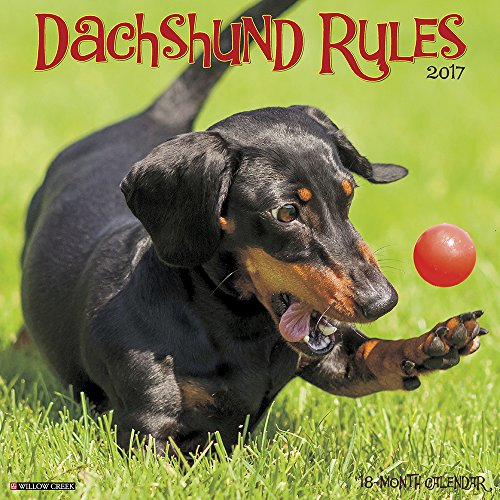 dachshund-rules-2017-wall-calendar-dog-breed-calendars