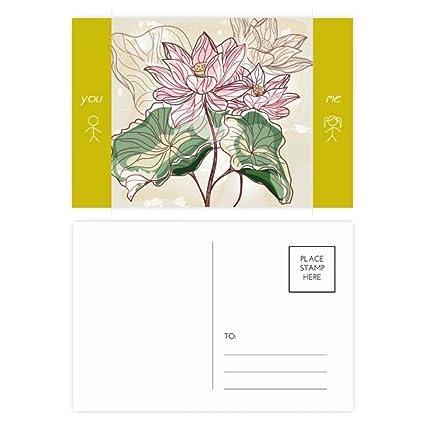 Amazoncom Lotus Flower Lotus Root Watercolor Plant Friend