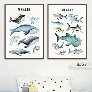 DNJKSA Child Poster Dinosaurs Whale Shark Marine Animal Nursery Canvas Art Print Education Wall Picture Painting Baby Kids Room Decor/40x60cmx2Pcs-No Frame
