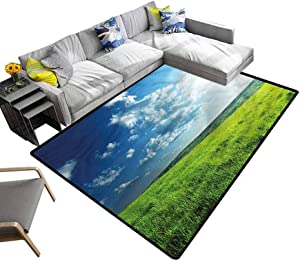 Nature, Bathroom Rug Meadow Valley Cloud Sun Kids Playing Mat Multicolor & Anti-Skid, 4'x 4'